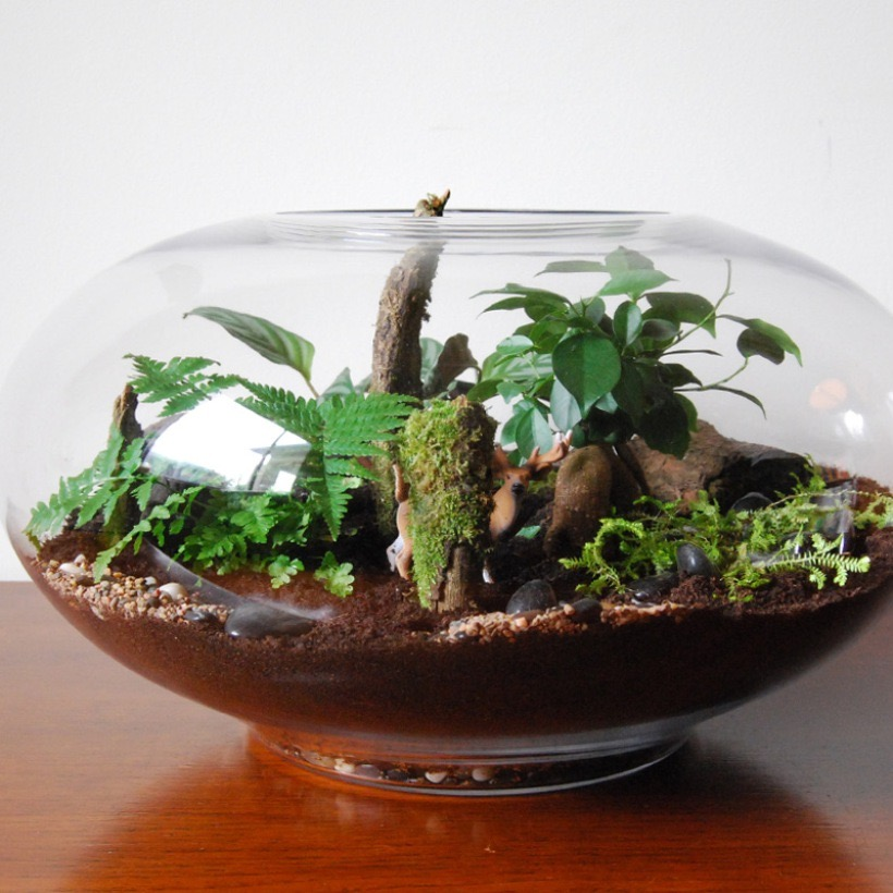 Terrariums And Potted Green The Rsd Blog Architecture Interiors